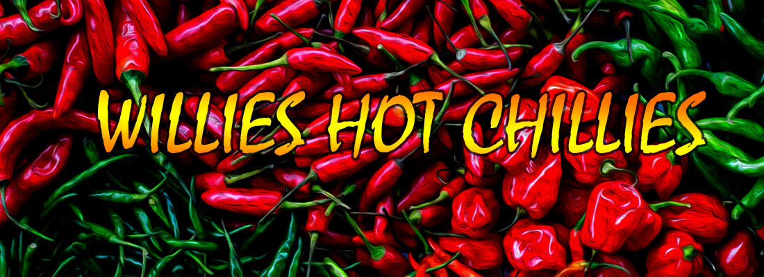 willies-hot chillies slot game banner