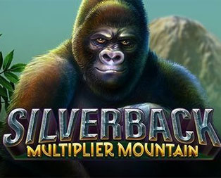 Silver Back Mountain free spins